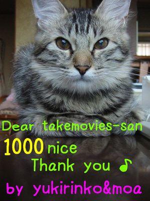 1000-nice.jpg